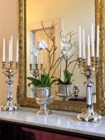 magnolia hall-mirror